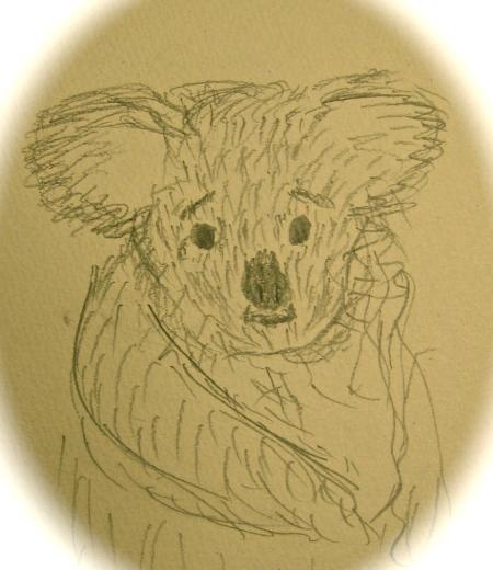 First Koala