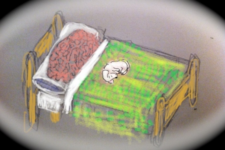 Updated Brain in Bed (With Dog)