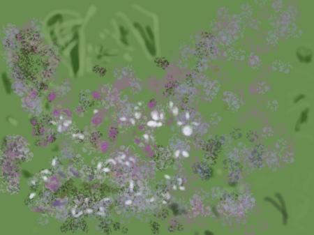 20110503-071538.jpg